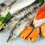 Fresh seafood on ice — Stock Photo #27316879