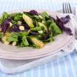Light salad on plate on napkin — Stock Photo #27318865