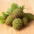 Green cones and fir tree on wooden background — Stock Photo #27320559