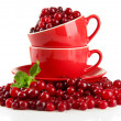 Stock Photo: Ripe red cranberries in cups, isolated on whit