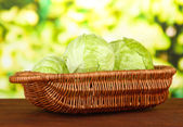 Green cabbage in wicker basket, on bright background — Stock Photo