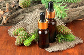 Bottles of fir tree oil and green cones on wooden table — ストック写真