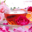 Rose tea close up — Stock Photo