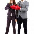 Young business in boxing gloves isolated on white — Stock Photo #27374661