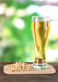 Beer in glass and nuts on table on nature background — Stock Photo