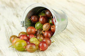 Fresh gooseberries in bucket on table close-up — Stock Photo