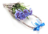 Beautiful bouquet of cornflowers in basket, isolated on white — Stock Photo