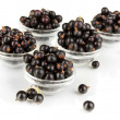 Fresh black currant isolated on white — Stock Photo