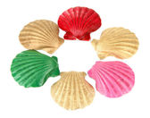Colorful seashells, isolated on white — Stock Photo
