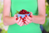 Woman hands holding bowl of ripe red cranberries, close u — Stock Photo