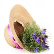 Bouquet of beautiful wild flowers in summer hat, isolated on white — Stock Photo #27498595