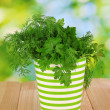 Colorful pot with parsley and dill on wooden table on natural background — Stock Photo #27720705
