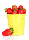 白で隔離されるバケツで新鮮なイチゴ — ストック写真