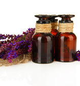 Medicine bottles and salvia flowers, isolated on white — Stock Photo