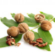 Stock Photo: Walnuts with green leaves, isolated on white