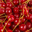Sweet cherry close-up — Stock Photo #27732853