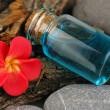 Bottle with basics oil on tree bark and stones close up — Stock Photo #27733187