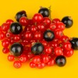 Stock Photo: Currants on yellow background