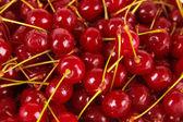 Sweet cherry close-up — Stock Photo