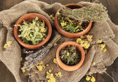 Medicinal Herbs in wooden bowls on bagging close-up — Stock Photo