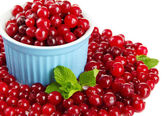 Ripe red cranberries in bowl, isolated on whit — Stock Photo