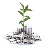 Plant growing out of silver coins isolated on white — Stock Photo