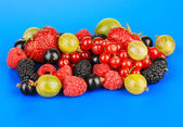 Ripe berries on blue background — Stock Photo
