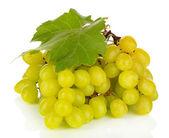 Uvas maduras deliciosas aisladas en blanco — Foto de Stock