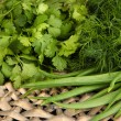 Stock Photo: Useful herbs close up