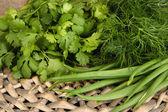 Useful herbs close up — Stock Photo