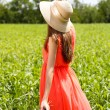 Portrait of beautiful young woman with poppies in the field — Foto de Stock