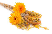 Fresh and dried calendula flowers in wooden spoons isolated on white — Stock Photo