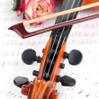 Classical violin with dry rose on notes — Stock Photo