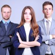 Business team standing in row on grey background — Stock Photo #27965337