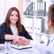 Job applicant having interview — Stock Photo #27965497