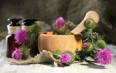 Medicine bottles and mortar with thistle flowers — Stockfoto