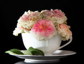 Roses in cup on black background — Stock Photo