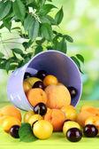 Frutas de verano brillante en un cubo en tabla de madera sobre fondo natural — Foto de Stock