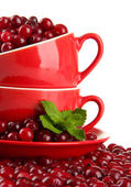 Ripe red cranberries in cups, isolated on whit — Stock Photo