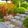 Landscaping in the garden — Stockfoto