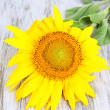 Stock Photo: Sunflower on wooden background