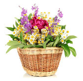 Bouquet of wild flowers in wicker basket, isolated on white — Stock Photo