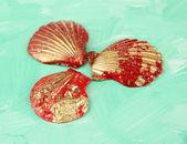 Coloridas conchas sobre fondo de color — Foto de Stock
