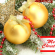 Christmas balls on fir tree with snow — Stock Photo #28096271