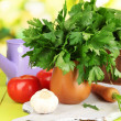 Fresh herb in pitcher on wooden table on natural background — Stock Photo #28099165