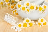 Medicine chamomile flowers on wooden table — Stock Photo
