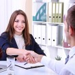 Job applicant having interview — Stock Photo #28104235