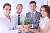 Equipe de negócios segurando juntos broto verde fresco — Foto Stock