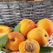 Apricots in basket on napkin close-up — Stock Photo