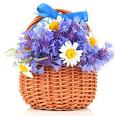 Beautiful bouquet of cornflowers and chamomiles in basket, isolated on white — Stock Photo